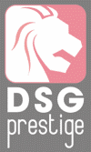 DSG Prestige with Magnitude Finance